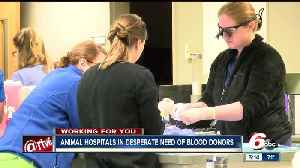 News video: Blood Bank at IndyVet is in short supply