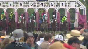 News video: Excitement Builds As Black-Eyed Susan Day Starts Preakness Weekend