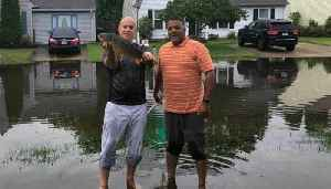 News video: Virginia Man Catches Fish on Flooded Street Outside Home