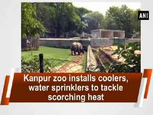 News video: Kanpur zoo installs coolers, water sprinklers to tackle scorching heat