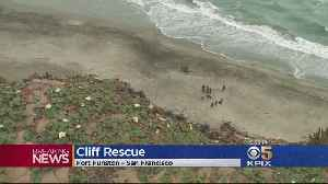 News video: Man, Dog Tumble Off Cliff At Fort Funston in SF
