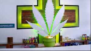 News video: Africa's first medical cannabis dispensary opens in Durban