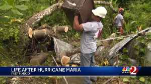 News video: Puerto Rico: Life after Hurricane Maria
