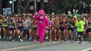News video: Bay to Breakers Runners Shrug Off Chill Winds to Stay Weird