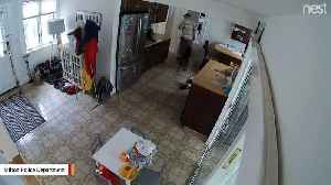 News video: Suspected Thief Makes Sure Dog Doesn't Run Away