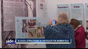 News video: 11 local attractions under one roof for International Museum Day