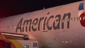 News video: Monkey Escapes American Airlines Flight In Texas
