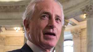 News video: Corker Turns Down Offer To Be Ambassador To Australia