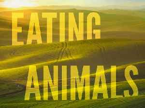 News video: Eating Animals