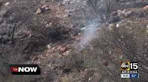 News video: Arizona national forests announce closures as wildfire danger looms