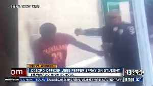 News video: Parent raises questions after student pepper sprayed in viral video