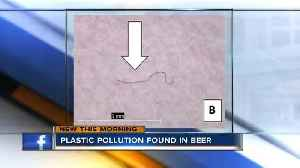 News video: Researchers find 'microplastics' in beers that source water from Lake Michigan