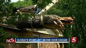 News video: Large Tree Falls On Home During Severe Weather