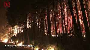 News video: Teen Must Pay Nearly $37M For Starting Oregon Wildfire, Judge Rules