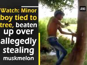 News video: Watch: Minor boy tied to tree, beaten up over allegedly stealing muskmelon