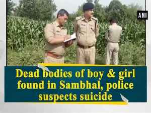 News video: Dead bodies of boy & girl found in Sambhal, police suspects suicide
