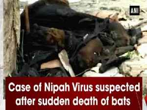 News video: Case of Nipah Virus suspected after sudden death of bats