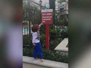News video: Boy Reads No Pet Waste Sign And Then Steps In Dog Poop