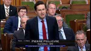 News video: Poilievre Grills Morneau On Carbon Tax Costs