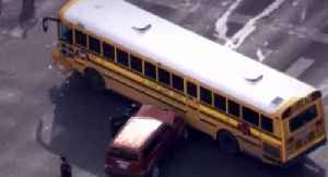 News video: Deadly crashes lead to call for seat belts on school buses