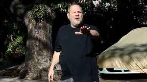 News video: Harvey Weinstein to Surrender to Authorities on Sex Assault Charges: Report