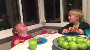 News video: Boy React To Bad News: They Will Have A New Baby Sister