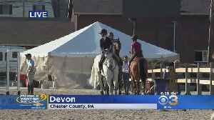 News video: What's New This Year At Devon Horse Show?