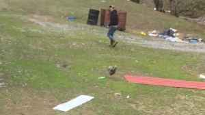 News video: Chicken Chases After Scared Man