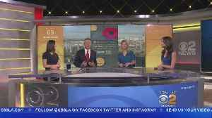 News video: National Poppy Day