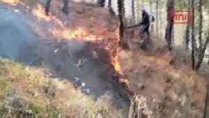 News video: Fire Rages In Uttarakhand In Past 7 Days