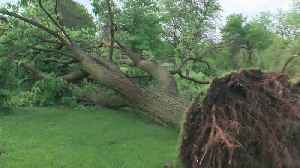 News video: After Storm Clean-Up, Twin Cities Residents Try To Beat The Heat