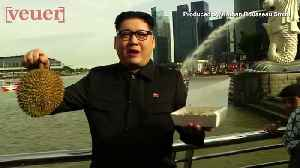 Kim Jong Un impersonator Spotted in Singapore, Fans of Summit Freak Out