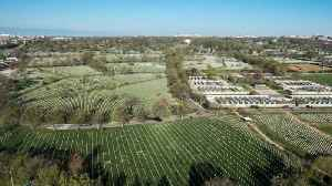 News video: Arlington National Cemetery Is Running Out of Room