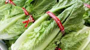More Dead in E. Coli Outbreak Linked to Romaine [Video]