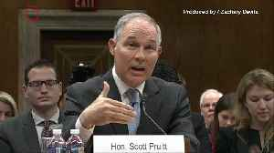 News video: Report: EPA Head Scott Pruitt Sat Courtside In Seats Owned By Coal Executive