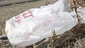 Chile Pushes To Ban Plastic Bags