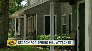 News video: Man tries to sexual assault woman in Spring Hill