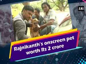 News video: Rajnikanth's onscreen pet worth Rs 2 crore