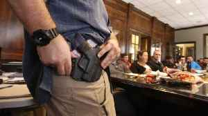 Fla. OK'd Concealed Gun Permits Without Background Check