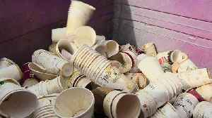 Your Paper Coffee Cup Is Not Recyclable [Video]