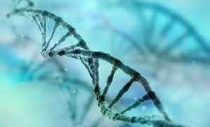 Can You Trust Any Company With Your DNA?