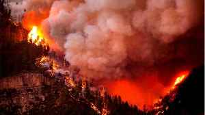 News video: Firefighters Fight Raging Colorado Wildfire