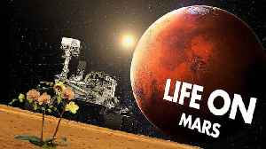 News video: NASA finds traces of ancient life on Mars