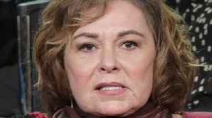 Twilight Zone? Roseanne Barr Sticks Vehemently To 'I'm Not A Racist' Story