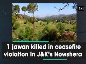 News video: 1 jawan killed in ceasefire violation in J and K's Nowshera