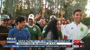 News video: South Bakersfield bar opens early for World Cup game