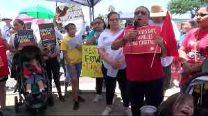 News video: Father's Day brings protests of separating migrant families
