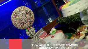 News video: Fifa World Cup Fever Reaches Kolkata's Cake Shop