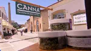 News video: Greek plan for economic high from cannabis