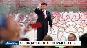 News video: China Beige Book's Miller on U.S.-China Trade Disputes